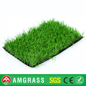 Mini Soccer Apple Green Artificial Grass From Allmay pictures & photos