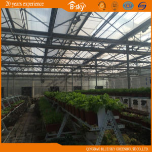 Netherlands Technology Auto environment Control Glass Greenhouse pictures & photos