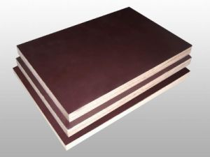 Film Faced Plywood Eucalyptus Core ISO9001: 2000 Standard (18mm)