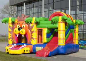 Inflatable Bouncy Castle with Slide, Inflatable Bouncing House, Inflatable Combo China pictures & photos