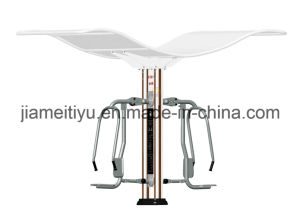 Outdoor Fitness Equipment Zijincheng Series Push Chairs pictures & photos