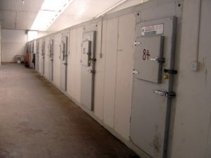 Internal Medicine Logistics Cold Store Room pictures & photos