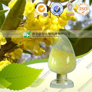 100% Natural Coptis Root Extract ~Berberine Hydrochloride pictures & photos