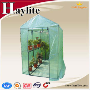 Use for Agricultural PE UV-4 Galvanized Steel Pipe Frame Green House pictures & photos