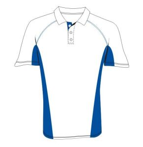 Fashion Nice Cotton/Polyester Sports Golf Polo Shirt (P032) pictures & photos
