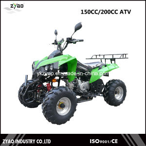 Gy6 150cc Automatic Engine Quad Bike 4 Wheeler for Sale ATV Factory Wholeser pictures & photos