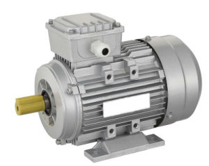 Three Phase Motor with CE Certification