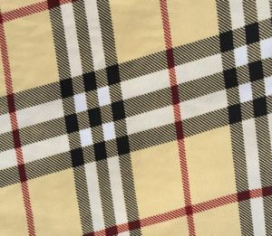 Burberry Plaid Cotton Double Double Canvas Fabric pictures & photos