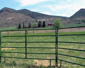 5footx10foot Ranch Steel Cattle Panel/Horse Corral Panel/Livestock Panel pictures & photos