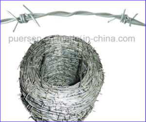 Competitive Price Double-Twist Barbed Wire Screwed pictures & photos