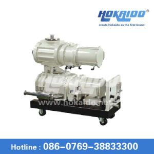 Rse Series Dry Screw Vacuum Pump (RSE802)