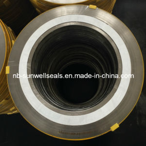 304PTFE Spiral Wound Gaskets/Cgi Swg/Spw pictures & photos