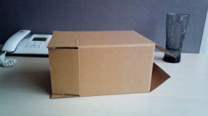 Kraft Carton Box / Corrugated Paper Box pictures & photos