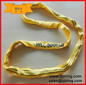 3t Polyester Endless Round Webbing Sling (can be customized) pictures & photos