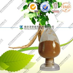 Natural 10: 1 Kudzu Root Extract with FDA Registered pictures & photos