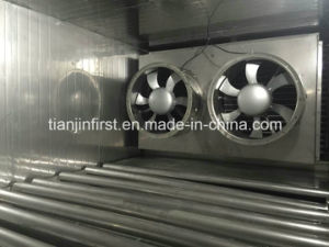 IQF Tunnel Freezer, Used Machine IQF Equipment pictures & photos
