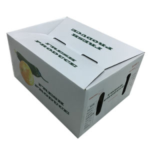 Cardboard Paper Fruit Box Packaging Box for Shipping pictures & photos