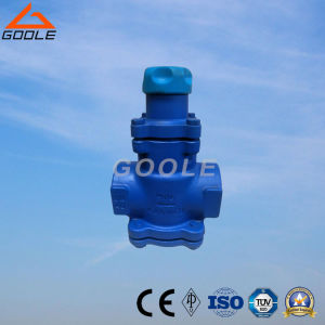 Spring Bellows Pressure Reducing Valve (BRV71/BRV73) pictures & photos
