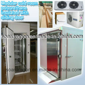 Modular Cold Room Polyurethane Insulated with Sliding Door pictures & photos