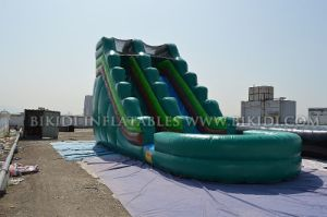 Inflatable Slide Inflatable Bouncer for Amusement Park, Water Slide with Pool, pictures & photos