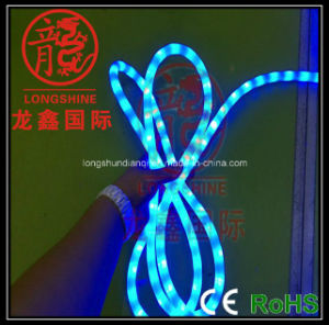 LED Christmas Rope Lights pictures & photos