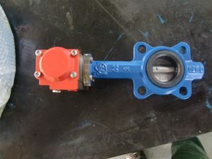 Cast Iron Soft Sealed PTFE Lever Operated Wafer Type Butterfly Valve