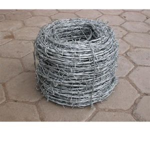 Galvanized or PVC Coated Barbed Wire pictures & photos