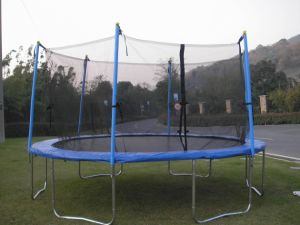 14ft Trampoline with Enclosure-Net Inside (20131208) pictures & photos