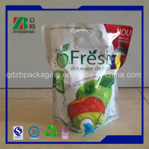 Plastic Packaging Bag in Box Pouch for Juice pictures & photos