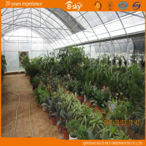 High Cost Performance Multi-Span Film Greenhouse China Supplier pictures & photos