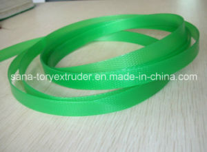 Plastic PET Packing Belt Making Machine pictures & photos