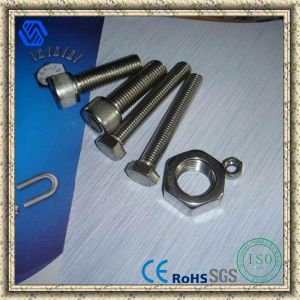 Stainless Steel Hex Bolt and Hex Nut pictures & photos