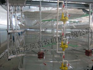 Automatic Battery Broiler Cage Certificate ISO9001 pictures & photos