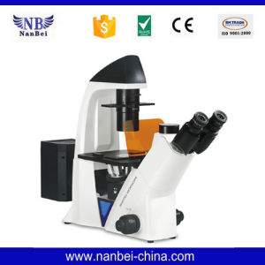 Bds400 Price of Fluorescence Inverted Microscope pictures & photos