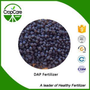 Fertilizer Grade Diammonium Phosphate DAP pictures & photos