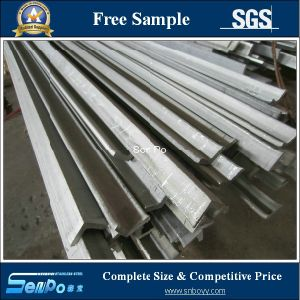 AISI 316L Stainless Steel Hot Rolled Angle Bar