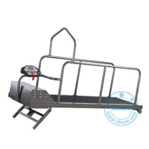 Incline Dog Treadmill (up to 110KG) (TM-180L) pictures & photos
