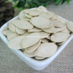Perfect Quality Shine Skin Pumpkin Seeds From China pictures & photos