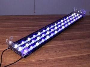 40cm 54W White+Blue LED Aquarium for Fresh Water