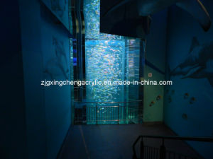 Large Acrylic Cylinder pictures & photos