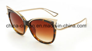 2016 High Quality Best Woman Sunglasses (501)