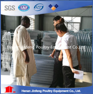 Automatic Chicken Layer Egg Cage for Poultry Farm for Sale pictures & photos