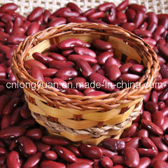 Professional Supplier of White Kidney Bean pictures & photos