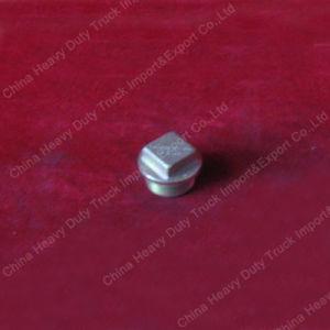 Sinotruk HOWO Original Truck Parts Magnetic Screw Plug (Vg2600150108) pictures & photos