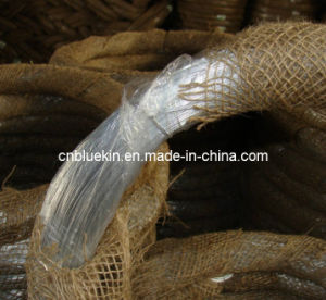 Iron Wire pictures & photos
