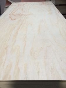 Radiata Pine Plywood Fsc Certificated 2.7mm 4.8mm 12mm 18mm Sales in Mexico pictures & photos