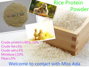 Rice Protein Meal Protein 60 Min pictures & photos