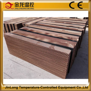 Jinlong Brand Corrosion-Resistant Cooling Pad for Chicken House/Farm/Shed pictures & photos