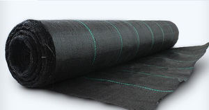 Weed Barrier Fabric/Woven Polypropylene/Ground Cover/Landscape Fabric Cmax pictures & photos