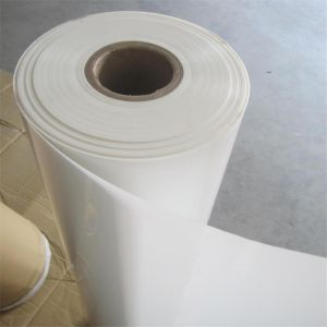 Insulation Film 6021 Polyester Film pictures & photos